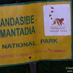 Nationalpark Andasibe Mantadia (Analamazoatra)